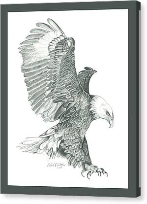 Raptor Canvas Print - Bald Eagle In A Dive by Robert Wilson
