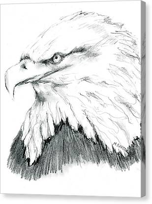 Canvas Print featuring the drawing Bald Eagle by Marilyn Barton