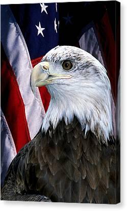 Bald Eagle Patriot Canvas Print by Larry Allan