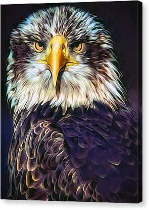Bald Eagle Portrait Canvas Print by Scott Wallace