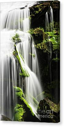Bald River Falls Canvas Print