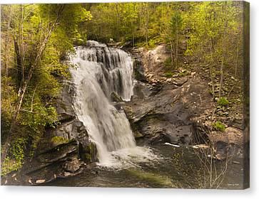 Bald River Falls Spring Canvas Print by Rebecca Hiatt