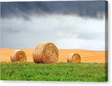 Bales And Layers Canvas Print by Todd Klassy