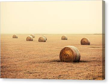 Bales In The Fog Canvas Print by Todd Klassy