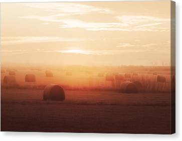 Bales In The Mist Canvas Print