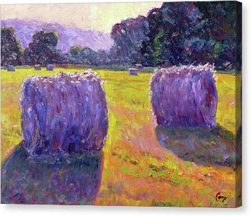 Bales Of Hay Canvas Print by Michael Camp