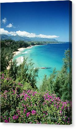Bali Hai Beach Canvas Print by Dana Edmunds - Printscapes
