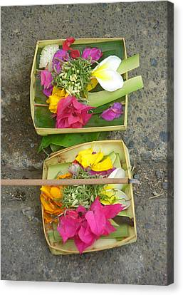 Balinese Offering Baskets Canvas Print by Mark Sellers