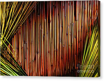 Bamboo And Grass Canvas Print