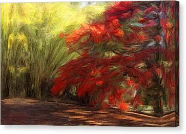 Bamboo And The Flamboyant Canvas Print by Caito Junqueira