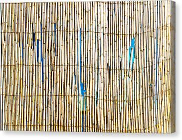 Bamboo Canes Canvas Print