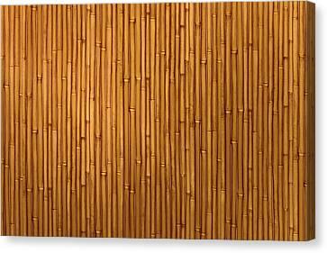 Bamboo Decorative Wallpaper. Canvas Print