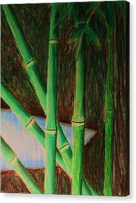Bamboo Forest Canvas Print by Bruce Byrnes