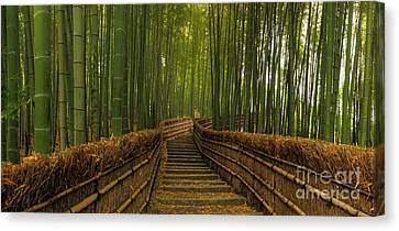 Bamboo Panorama - Kyoto Japan Canvas Print