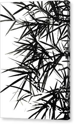 Bamboo  Poems 2 Canvas Print by Jenny Rainbow