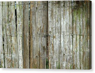 Bamboo Wood Fence Canvas Print