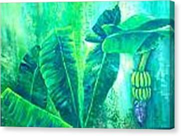 Banan Leaves 5 Canvas Print by Carol P Kingsley