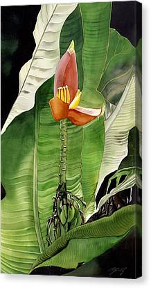 Canvas Print featuring the painting Banana Blossom by Alfred Ng
