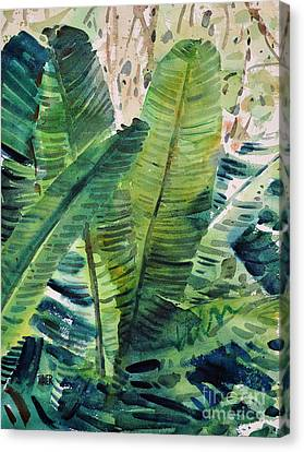 Banana Leaves Canvas Print by Donald Maier
