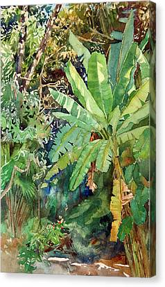 Banana Canvas Print by Peter Sit