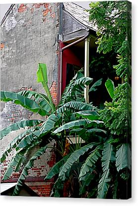Bananas And Bricks Canvas Print