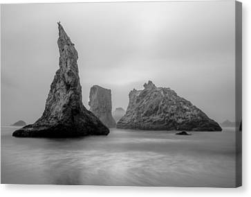 Bandon Beach In The Fog Canvas Print by Joe Doherty
