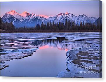 Canvas Print - Banff Pink Snow Capped Peak Reflections by Adam Jewell
