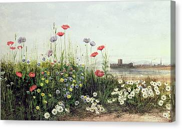 Bank Of Summer Flowers Canvas Print by Andrew Nicholl