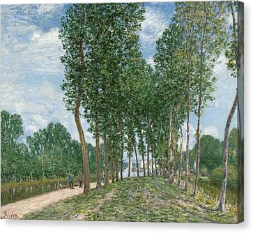 Banks Of The Loing At Moret  Canvas Print