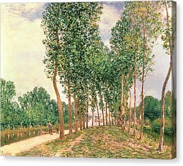 Banks Of The Loing, Near Moret  Canvas Print