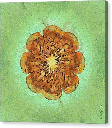 Bannisters Beauty Flowers  Id 16164-021851-17610 Canvas Print