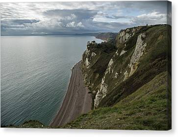 Banscombe Beach From Beer Head Canvas Print