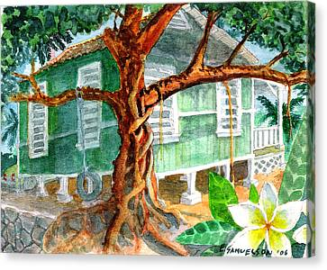 Banyan In The Backyard Canvas Print by Eric Samuelson