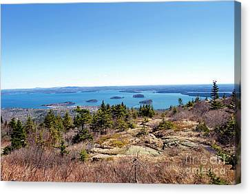 Bar Harbor From Cadillac Canvas Print by Skip Willits