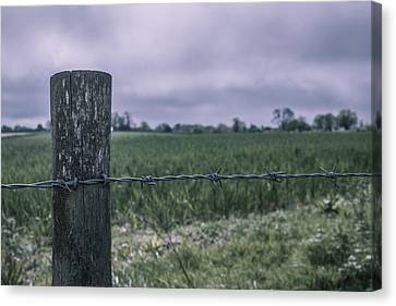Barbed Delight Canvas Print