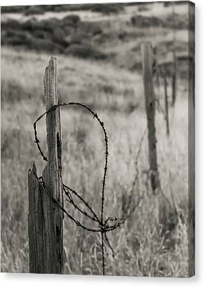 Barbed Wire Fences Canvas Print - Barbed Wire by Joseph Smith