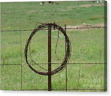 Barbed Wire Canvas Print by Michael MacGregor
