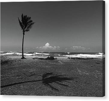 Canvas Print featuring the photograph Barbers Pt., Oahu by Art Shimamura