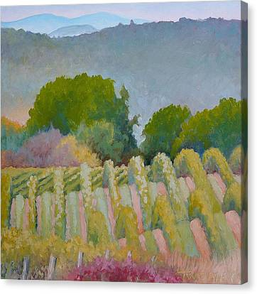 Barboursville Vineyards 1 Canvas Print