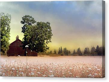 Canvas Print featuring the photograph Barn And Lace by Rebecca Cozart