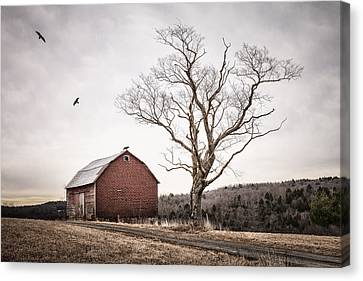 barn and tree - New York State Canvas Print by Gary Heller