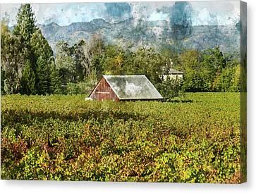 Barn In A Vineyard Canvas Print by Brandon Bourdages