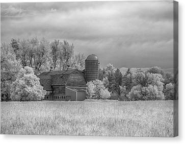 Barn In Infrared Canvas Print by Guy Whiteley