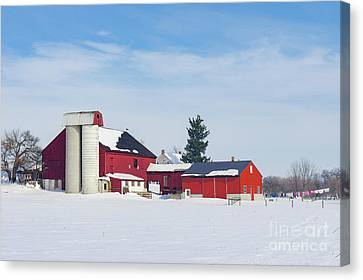 Barn In Snow Covered Meadow Canvas Print