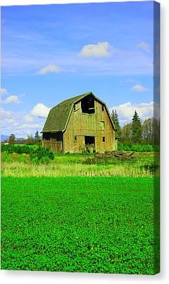 Barn Near Mt Vernon Washngton Canvas Print by Jeff Swan