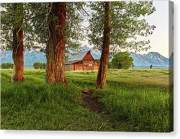 Maine Barns Canvas Print - Barn On The Path by Jon Glaser