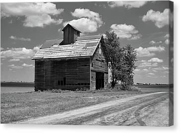 Barn Scene ...black And White Canvas Print by Tom Druin