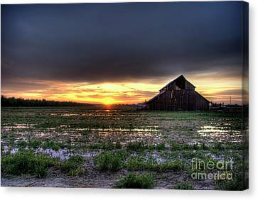 Barn Sunrise Canvas Print by Jim and Emily Bush