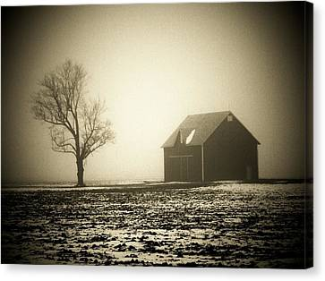 Barn Tree  Fog Canvas Print by Michael L Kimble