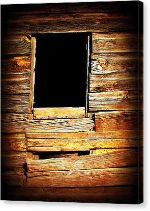 Barn Window Canvas Print by Perry Webster